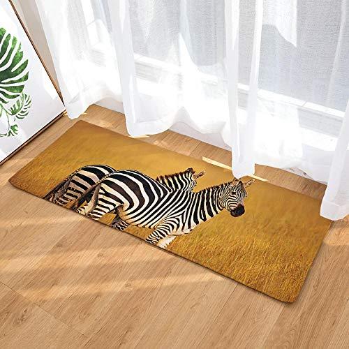 Doormat tapijtloper voor keuken, antislip, flanel, zebrapatroon, geel, voor keuken, badkamer, mode, retro, super zacht, absorberend en antislip