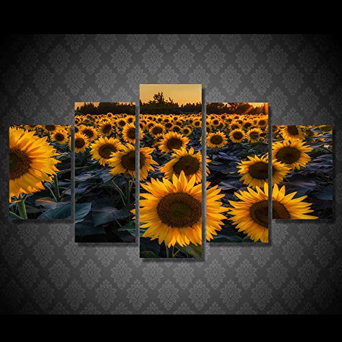 WEDSA Wall Picture Canvas Painting Poster Decoración del hogar HD Impreso Sunflower Field Evening Painting Canvas Print Room Decor Print Poster Photo Canvas 30x40cmx2 30x60cmx2 30x80cmx1 Sin Marcos