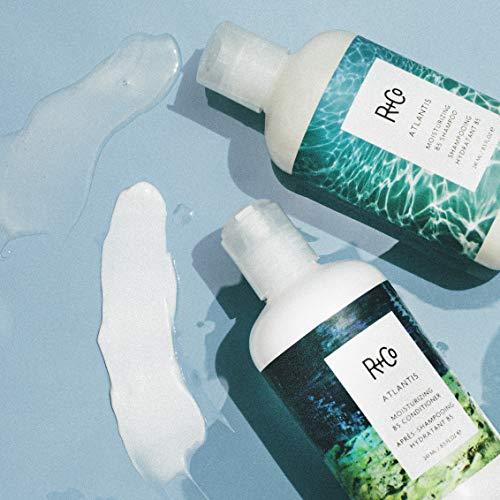 R+Co Atlantis Moisturizing B5 Shampoo, 8.5 Fl Oz