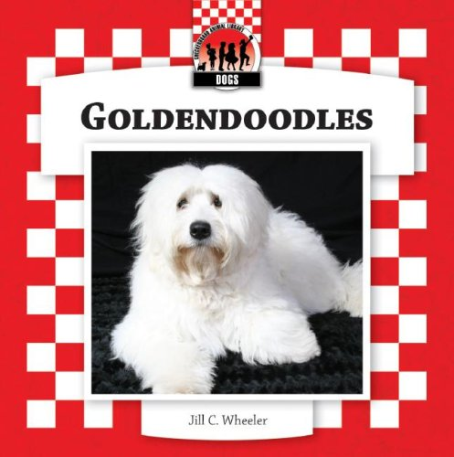 Goldendoodles (Designer Dogs Set 7)