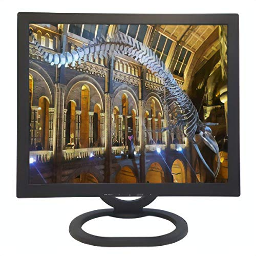 ViewEra V191BN2 Active Matrix TFT LCD Monitor, 19
