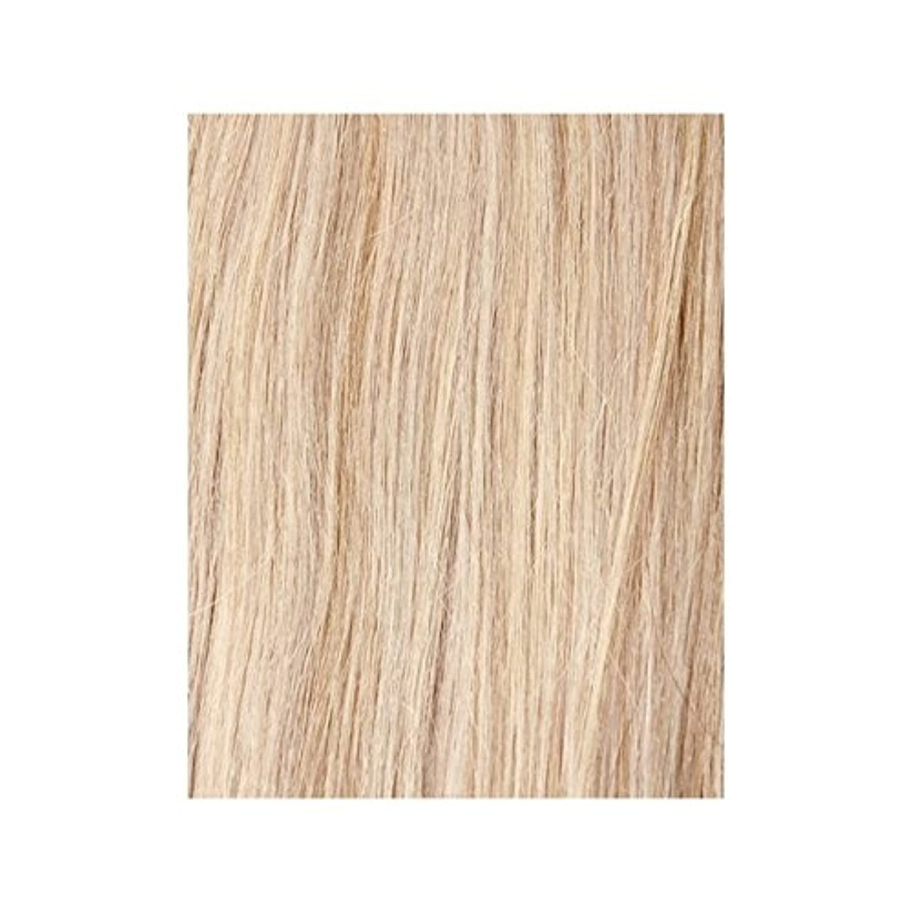 言及する構成員困惑するBeauty Works 100% Remy Colour Swatch Hair Extension - Vintage Blonde 60 - ヴィンテージブロンド60 - 美しさは、100%レミーの色見本ヘアエクステンションの作品 [並行輸入品]