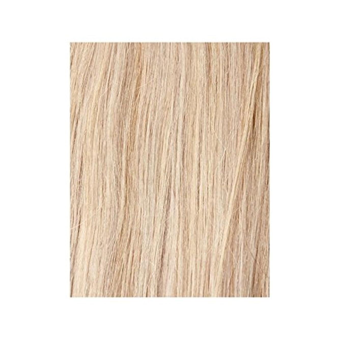 店主はがきフェデレーションヴィンテージブロンド60 - 美しさは、100%レミーの色見本ヘアエクステンションの作品 x2 - Beauty Works 100% Remy Colour Swatch Hair Extension - Vintage Blonde 60 (Pack of 2) [並行輸入品]