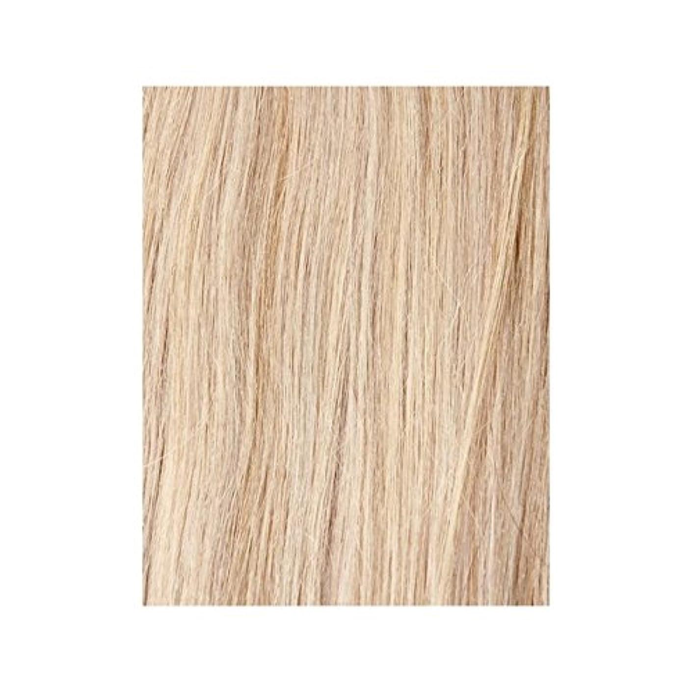日没ライド真剣にヴィンテージブロンド60 - 美しさは、100%レミーの色見本ヘアエクステンションの作品 x2 - Beauty Works 100% Remy Colour Swatch Hair Extension - Vintage Blonde 60 (Pack of 2) [並行輸入品]