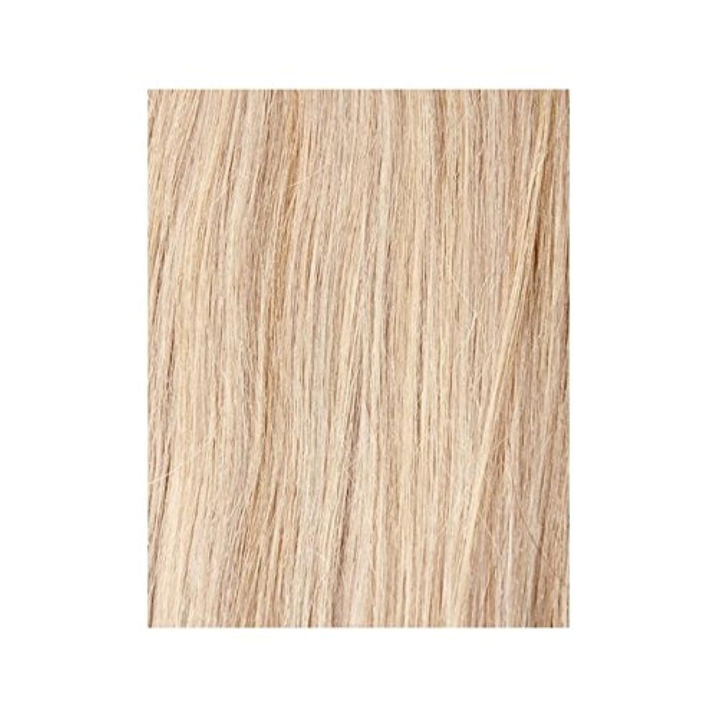 然としたチューブそうヴィンテージブロンド60 - 美しさは、100%レミーの色見本ヘアエクステンションの作品 x4 - Beauty Works 100% Remy Colour Swatch Hair Extension - Vintage Blonde 60 (Pack of 4) [並行輸入品]