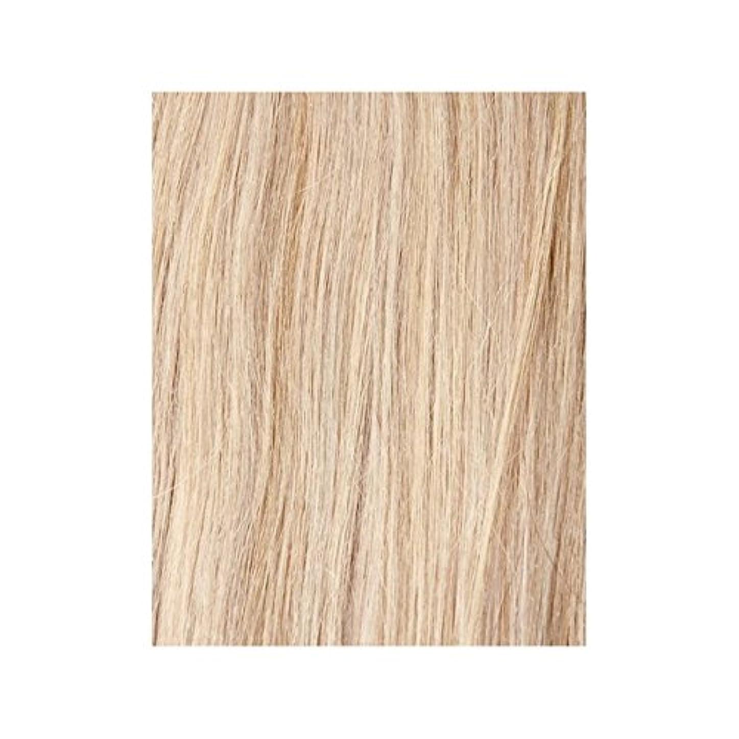 フェザー結紮公演ヴィンテージブロンド60 - 美しさは、100%レミーの色見本ヘアエクステンションの作品 x4 - Beauty Works 100% Remy Colour Swatch Hair Extension - Vintage Blonde 60 (Pack of 4) [並行輸入品]