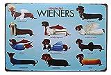 Hioni Wonderful Wieners Cute Pet Dog Vintage Blechschild