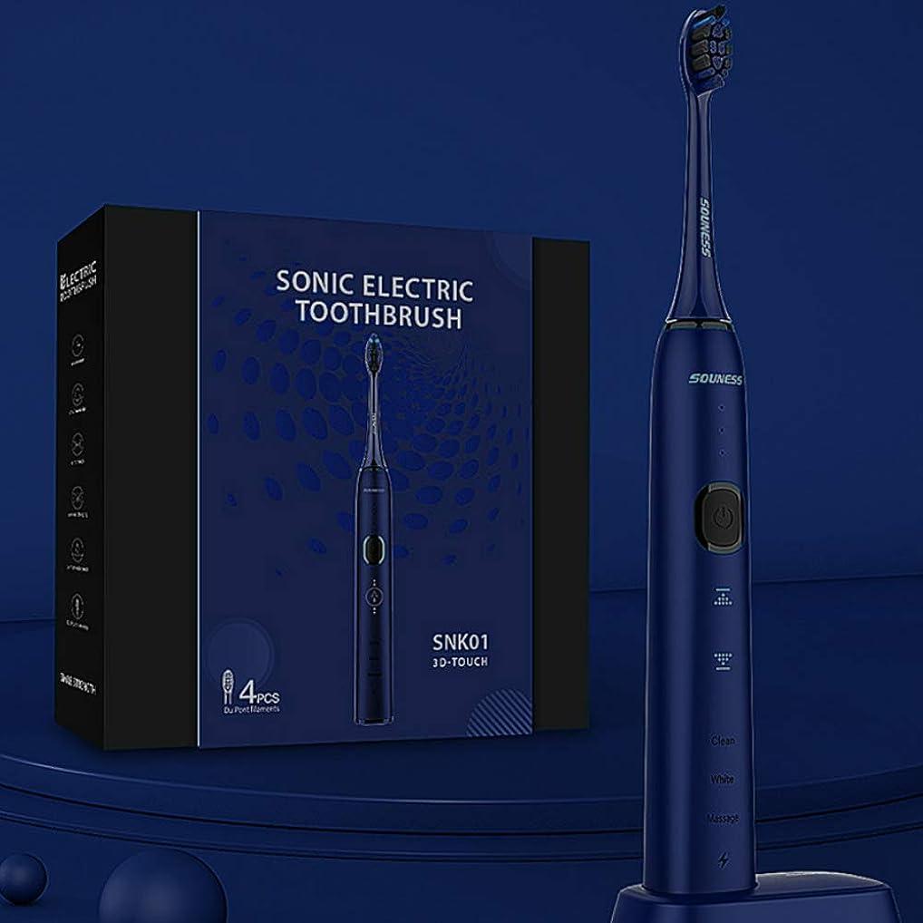 沼地テメリティ解決する大人のための3Dタッチ組み込みタイマー長いバッテリ寿命良い防水性能三つのブラッシングモードの誘導充電とインテリジェントソニック電動歯ブラシ Alysays