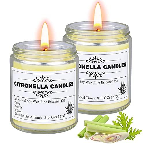 Citronella Kerze outdoor, 2 Stück Kerzen im Glas Großen, Duftkerze Citronella Kerzen glas perfekt für Camping, Indoor, Grillen, Picknicks, Garten, Sommergeschenk