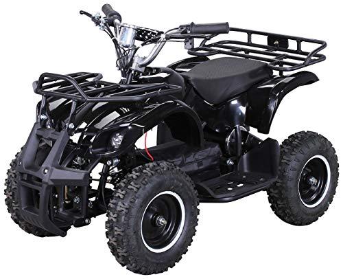 Actionbikes Motors Kinder Elektro Miniquad ATV Torino 1000 Watt 36 Volt - Scheibenbremsen - Umweltfreundlicher Elektromotor (1000 Watt Schwarz)