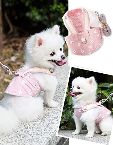 Rantow Small Dogs Harness + Dogs Leash Rope Set - No Choke Puppy Cat Dog Front Vest Harnesses Walking Lead Outdoor for Pet Corgi Poodle Schnauzer Chihuahua Pomeranian Pugs Shih Tzu Bichon Frise