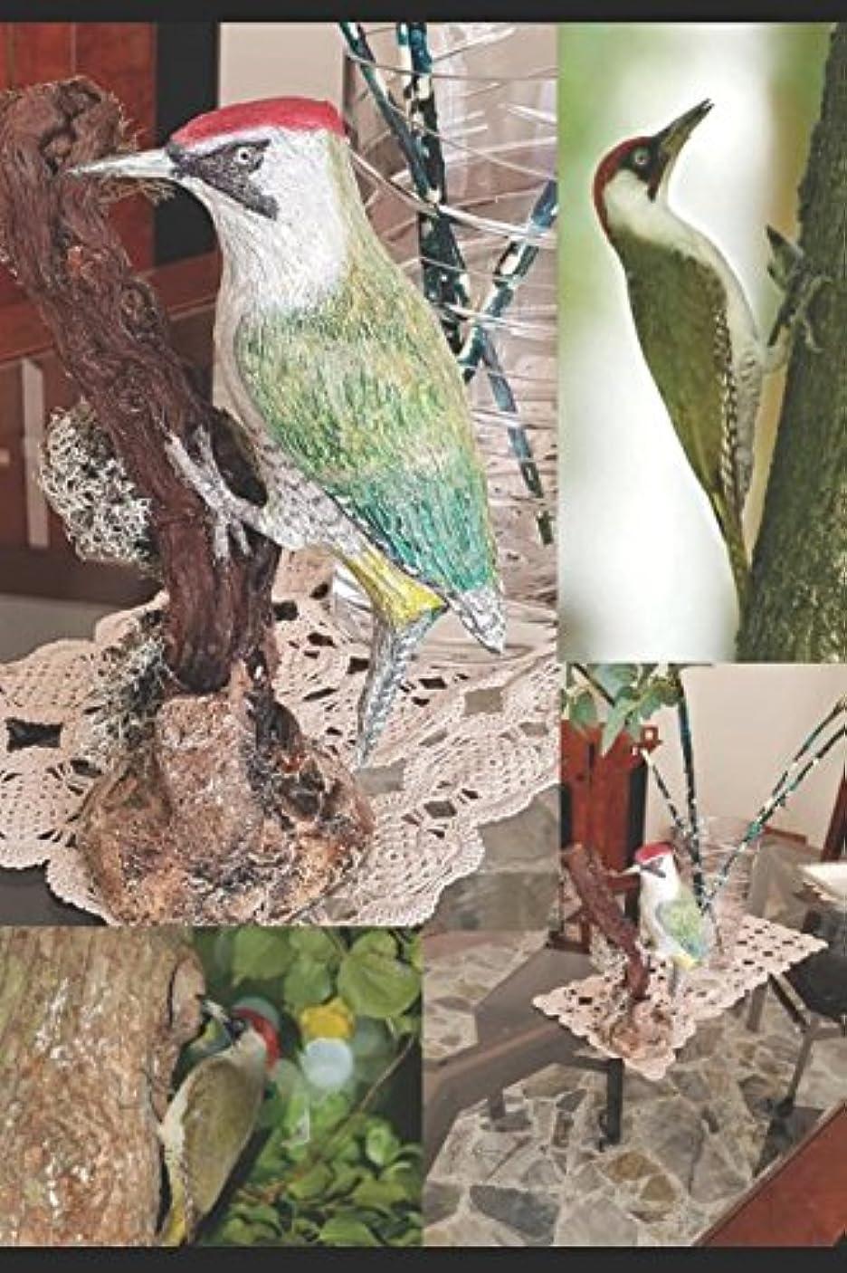予防接種するトリップ議論するDESDE TAXIDERMY A LA ESCULTURA: NOCIONES Y TéCNICAS VOL. 4 AVES: Escultura de un carpintero verde (Dalla Tassidermia alla Scultura)