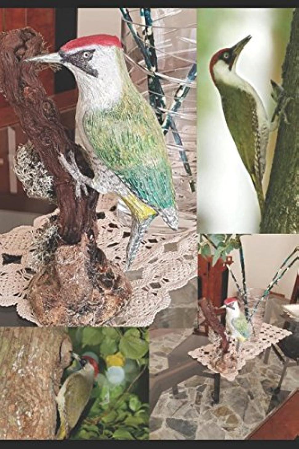 古い悪行トーナメントDESDE TAXIDERMY A LA ESCULTURA: NOCIONES Y TéCNICAS VOL. 4 AVES: Escultura de un carpintero verde (Dalla Tassidermia alla Scultura)