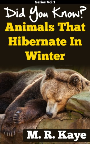 Did You Know Animals That Hibernate In Winter Kindle Edition By