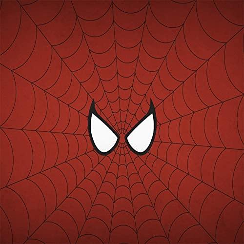 Amacigana Lot de 2 housses de coussin en microfibre Spider Man Multicolore 40 x 60 cm Housses de coussin décoratives douces pour canapé, lit, canapé
