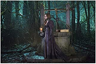 Rebecca Mader Once Upon a Time standing in dark brown ornate dress in front of well in forest 8 x 10 Inch Photo
