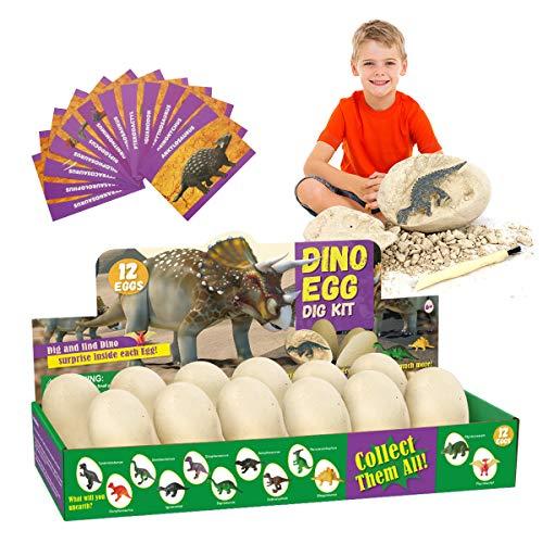 E-More Huevos de Dinosaurio de Kit de Excavación Paquete de