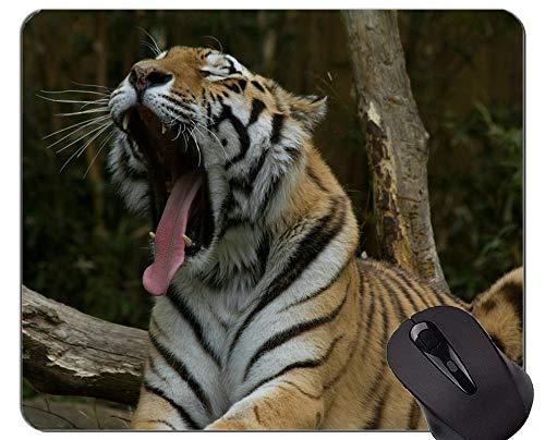 Yanteng Tigre Que mira intensamente la Alfombrilla de ráton del Juego de la decoración, Tigre Alfombrilla de rá