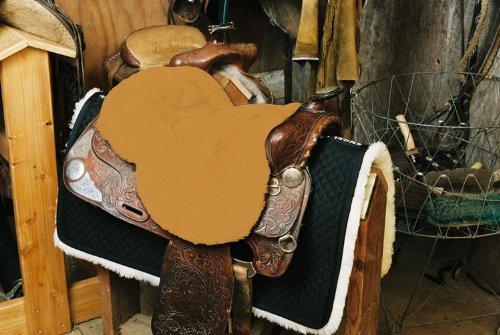 Engel Reitsport Lammfell Sattelsitzbezug Western Farbe Camel (Sabez 2, ohne Hornausschnitt/Horndurchlass)