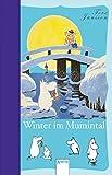 Winter im Mumintal (Die Mumins)