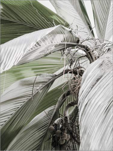 Posterlounge Cuadro de metacrilato 60 x 80 cm: Green Jungle I. de Magda Izzard
