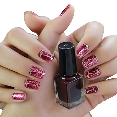 Gaddrt Cracked Nail Shatter Nail Kit Nail Polish Set Of 12 Colours Included Base Set (D)