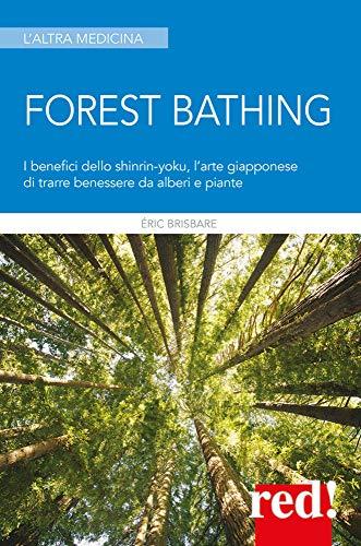 Forest bathing: I benefici dello shinrin-yoku, l'arte giapponese di trarre benessere da alberi e piante