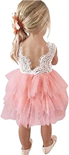 Toddler Baby Flower Girls Princess Tulle Dress Lace Backless Tutu A-line Beaded Party Dresses