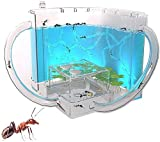 WSZYBAY Ant Nests, 3D Ant Farm With Translucent Gel Maze Viewing Area, Ant Farms Habitat For Children For House Ants, Science Educational Toy
