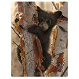 Brown Bear Blanket Animal Pattern Digital Print Fleece Throw Hug Birch Tree - Fall Winter and Spring