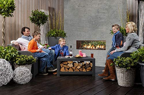 Faber theMOOD [gashaard buitenshuis]: helder glas (doorzichtig) - propaan/butaangasfles - decoratief hout