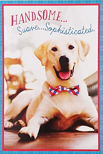 Handsome Suave Sophisticated - Happy Birthday Greeting Card for Him with Golden Retriever Labrador Dog -'You Do Everything in Style!'