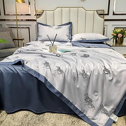Zweiseitige Klimaanlage Tencel Quilt 4-Stück Set, waschbare Seide Sommerquilt, kühle Sommerquilt 60 * 69 Zoll