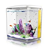 FREESEA 1.4Gallon Betta Aquarium Starter Kits Square Fish Tank with LED Light and Filter Pump