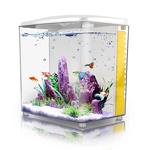 Aquarium Starter Kit with LED Light and Filter Pump