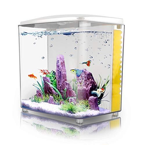 FREESEA 1.2Gallon Betta Aquarium Starter Kits Square Fish Tank with LED Light and Filter Pump