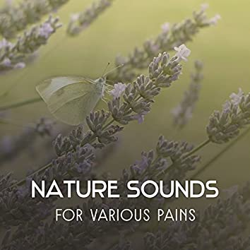 Nature Sounds for Various Pains – Hypnotic Music to Help You Fight with Physical & Mental Ailments, Therapeutic Melodies for Diseases Treatment
