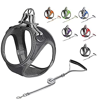 Dog Harness and Leash Set Reflective Adjustable Dog Vest Harness for Small Dogs Breathable Fit for Small Medium Pet Vest Harness Set Cat Leash and Breathable Puppy Harness  1-Black XXS