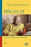 Wie es ist: Band 1; Essenz von Dzogchen und Mahamudra: Herzensunterweisungen eines Dzogchen- und Mahamudra-Meisters - Kyabje Urgyen Rinpoche