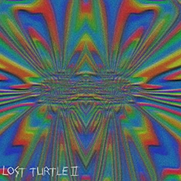 lost turtle ll