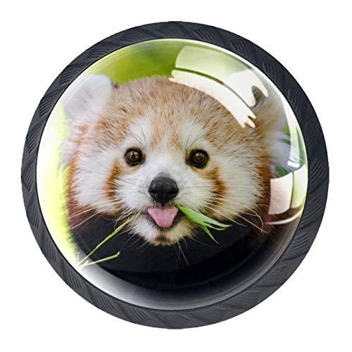 Redondo Negro pomos Panda animal para muebles de habitación infantil, para habitación infantil, armarios, cajones, baúles (4pcs) 35mm
