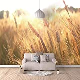 Fototapeten Goldenes Weizenfeld Vlies Wand Tapete Moderne Wandbilder Design Tapete für Kinderzimmer Schlafzimmer Wohnzimmer Büro Dekoration 350CMx245CM