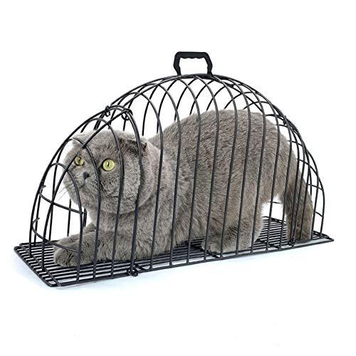 Cacoffay Gabbia per Gatti Cat a 2 Porte Visibile Gabbia per Animali Domestici Sicurezza Domestica Leggera per la rifinitura di Unghie, l'iniezione, Asciugacapelli Pet Supplies