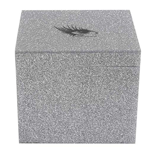 Durable Eyelash Storage Box Eyelash Extension Storage Box for Beauty for Home Use for Makeup for False Eyelash(Silver storage box)