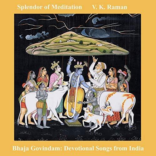 Splendor of Meditation & V K Raman