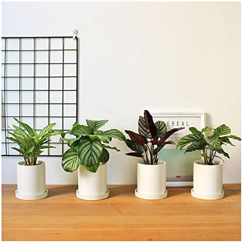 Moule à béton pour plantes succulentes, 4 trous faits à la main, porte-stylos, argile en silicone, ciment, outil de moulage