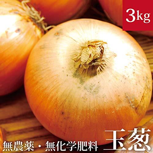 北海道 玉ねぎ 3kg 無農薬・無化学肥料