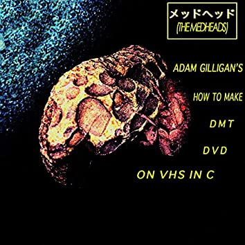 Adam Gilligans How to Make DMT DVD on VHS in C