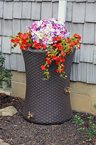 Good Ideas IMP-N50-DBR Impressions Nantucket Rain Saver Rain Barrel, 50 Gallon, Dark Brown