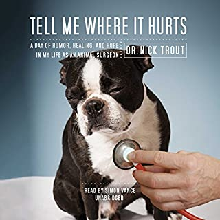 Tell Me Where It Hurts audiobook cover art
